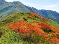 【今日は山の日】どうすれば「祝日」を作れるの?