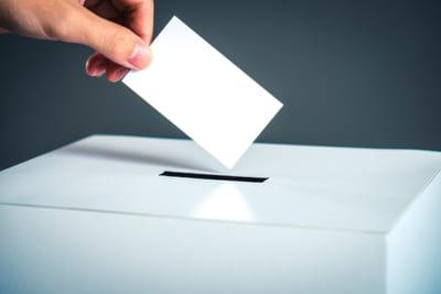 今年は12年に一度の選挙ビッグイヤー!|2019年 注目すべき選挙